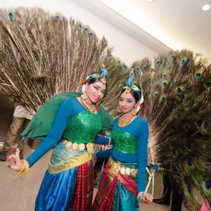 peacock dancers magical wonderlande