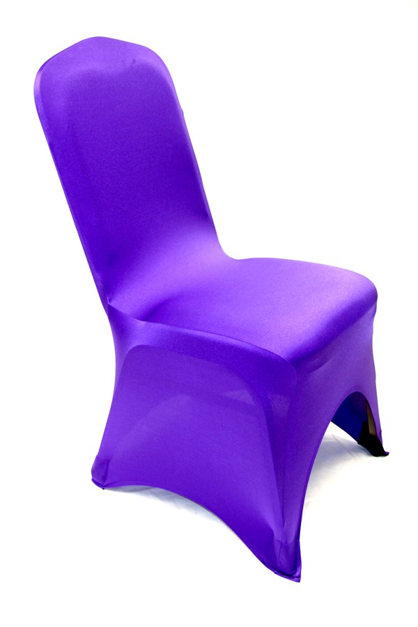 Purple Spandex Magical Wonderlande