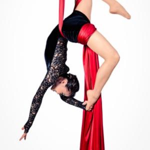 Aerial Silk Acrobatics