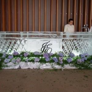 Mobile ice bar